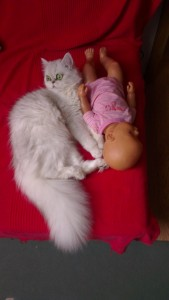 Alice sa bebom