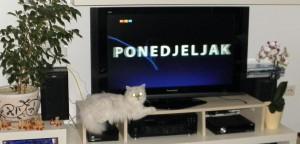 Alice pozira ispred TVa
